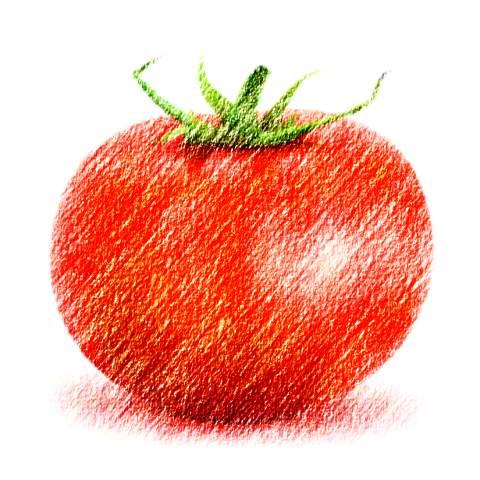 tomato-edit