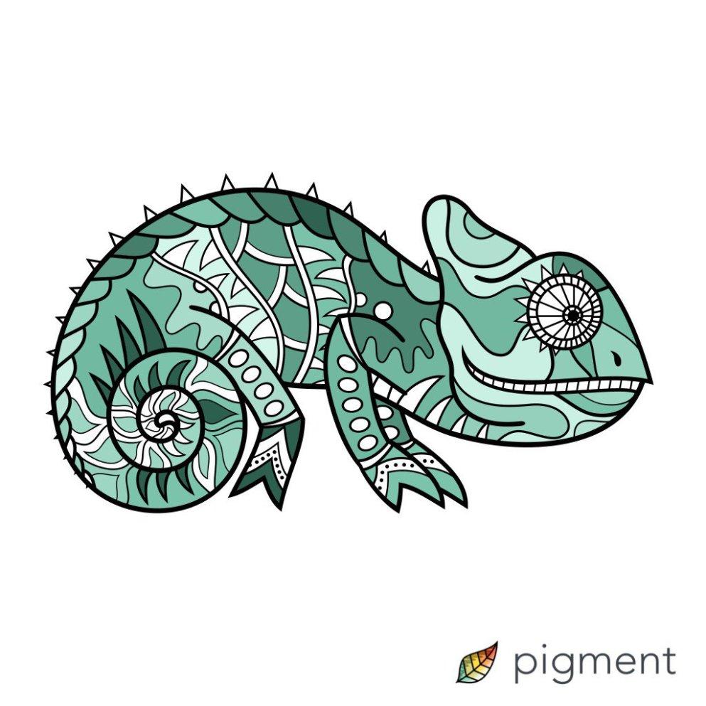 chameleon-by-bfk