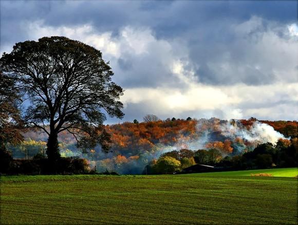 fields-autumn-bonfire-places-fields-blue-sky-colors-sesons-tree-nature-smoke-orange-clouds-green-free-desktop-background.jpg