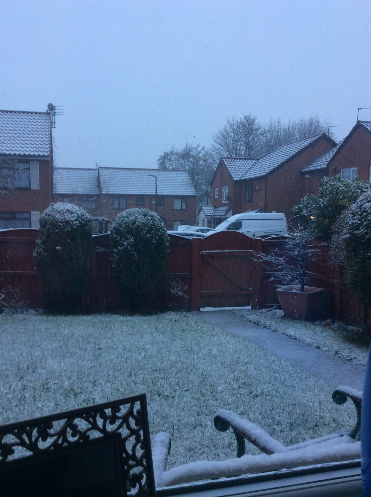 Snow 🌨