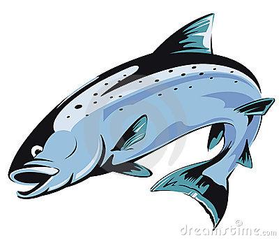 salmon-clipart-jumping-salmon-10284256